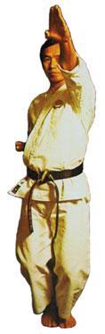 Basic Karate Moves AgeUke