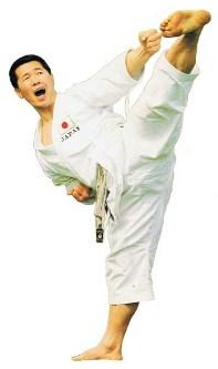 Basic Karate Moves Kagawa Yoko Geri