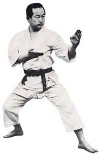 Basic Karate Moves Nakayama Shuto Uke
