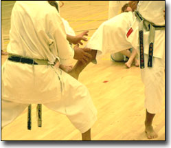 Karate Fighting 4
