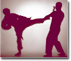 Karate Fighting 6