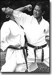 Karate Kata Bunkai - Mae Enpi