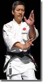 Karate Kata Bassai Sho
