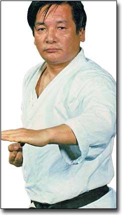 Karate Legends Shoji4