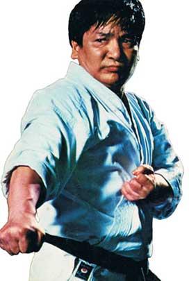 Karate Legends Shoji