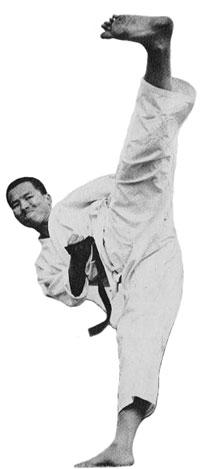 Shotokan Tiger Enoeda Kekomi