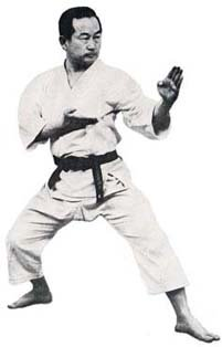 Learn karate moves