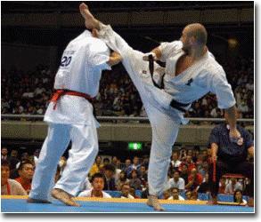Kyokushin Karate Kick