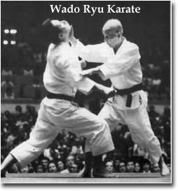 Wado Karate